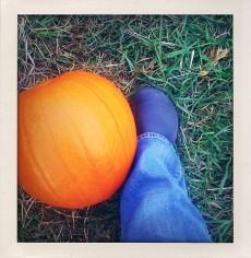 Croc-a-pumpkin